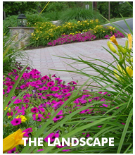 Landscape Services - CM Jones Inc. comprehensive landscsape construction
